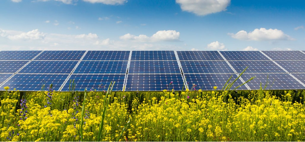Information on Solar Panels | GreenMatch.co.uk