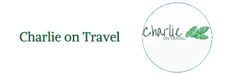Charlie On Travel Small Logo